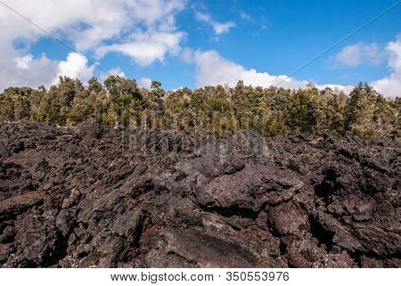 Kilauea Volcano, Hawaii, Usa. - January 9, 2012: 1961 Pile Of Black And Brown Lava As A Wall In Fron