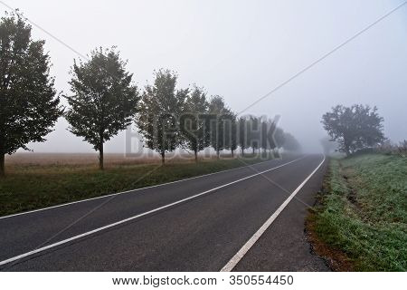 Intentionaly Blurry - Defocused Photo Of Straight Empty Country Road Leading Into Morning Fog / Mist