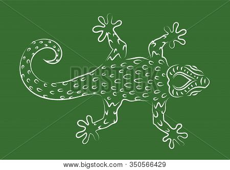 Beautiful Hand Drawn Linear Illustration With White Gecko Silhouette On The Green Background