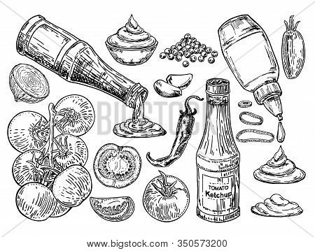 Ketchup Sketch. The Ingredients From Which Ketchup Is Prepared. Ketchup Sauce Bottle With Tomatoes.