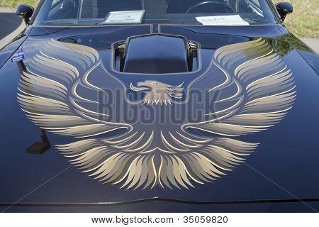 1980 Pontiac Firebird Trans Am Hood