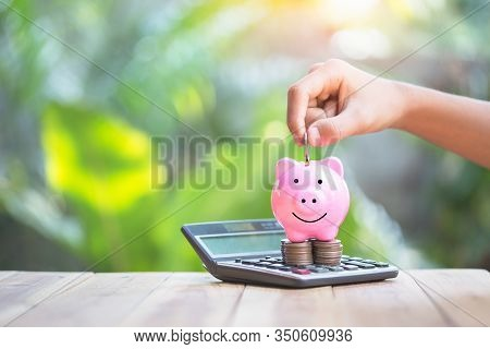 Piggy Bank Is Placed On The Calculator. Hand That Is Coin Down The Piggy Bank. Planning Savings Mone