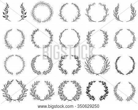 Ornamental Branch Wreathes. Laurel Leafs Wreath, Olive Branches And Round Floral Ornament Frames Vec