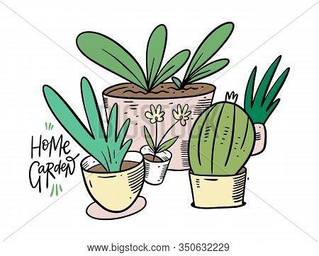 Home Graden. Green Plants In Home Pots. Vector Illustration In Cartoon Style.