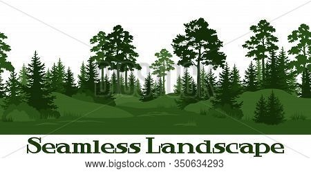 Seamless Horizontal Summer Forest With Pine, Fir Tree, Grass And Bush Green Silhouettes On White Bac
