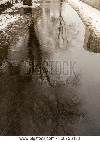 Reflection of a tree in a dirty puddle in winter
