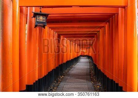 Thousand Of Red  Torii Gates Along Walkway In Fushimi Inari Taisha Temple Is Important Shinto Shrine