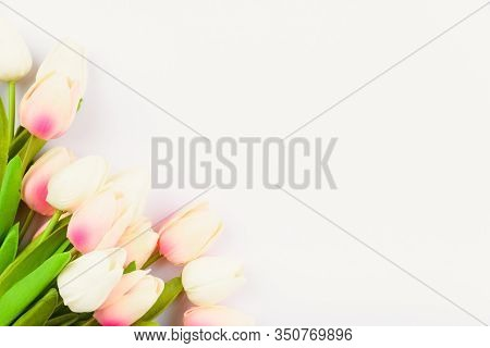 Happy Women's Day, Mother's Day And Valentine's Day Concept. Top View Flat Lay Tulip Flower