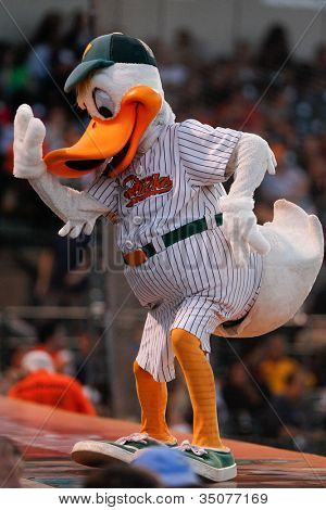 CENTRAL ISLIP-JULY 21: Long Island Ducks mascot QuackerJack entertains the crowd at the game against the Sugar Land Skeeters on July 21, 2012 at Bethpage Park in Central Islip, New York.