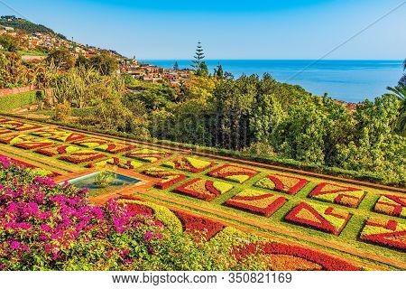 Botanical Garden In Funchal, Madeira, Portugal, Selective Focus
