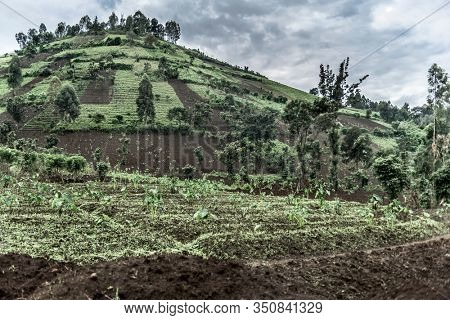 Mountainside in Nord Kivu, DRC