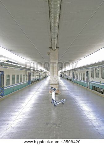 Trains In Station With Traveller