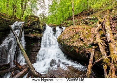 Waterfall In The Forest. Two Segment Stream. Fallen Trees In The Cataract. Beautiful Nature Scenery