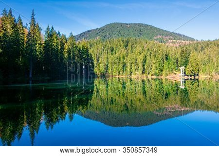 Mountain Lake Among The Coniferous Forest. Morning Nature Scenery With Reflections In Calm Water. Su