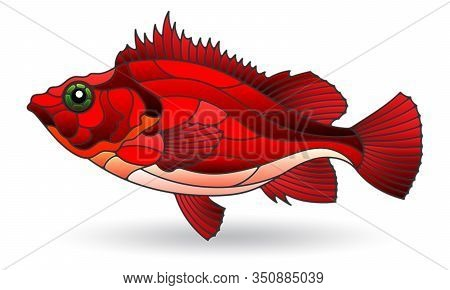 Illustration In Stained Glass Style With Sea Bass, Isolated On A White Background