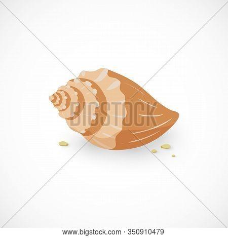 Vector Cartoon Icon Of Sea Shell And Stones Isolated On White Background. Marine Sea Mollusc Illustr