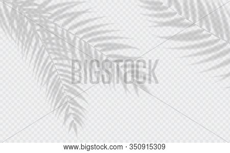 Transparent Shadow Effects. Vector With Shadow Overlays On Transparent Background. Vector Of Transpa