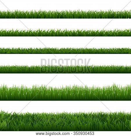 Realistic Grass Borders. Green Garden Herb Plant, Field Landscape Fresh Lawn Element, Lush Meadow Ga