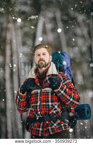 Concentrated Hiker In Checkered Jacket Wandering Through Snowfall