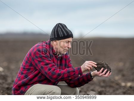 Mature Farmer Holding Clod Of Earth In Hands And Examining Soil Quality In Winter Time In Field
