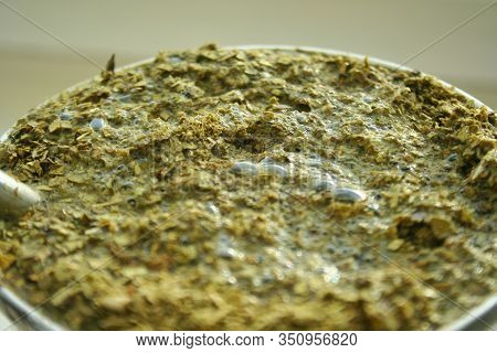 Closeup Green Yerba Mate. Flooded Yerba Mate Tea Leaves. Brewed Tea With Sticks And Tea Leaves From