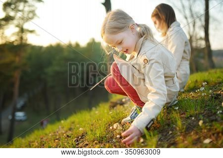 Two Cute Young Sisters Having Fun Together On Beautiful Spring Day. Active Family Leisure With Kids.
