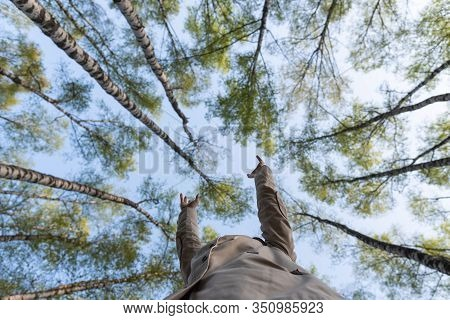 The Headless Girl Held Out Her Hands Trying To Reach The Tops. Bottom View Of A Trees In Spring Sunn