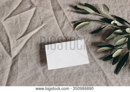 Moody Feminine Wedding Stationery Mock-up Scene. Blank Greeting, Business Card And Green Olive Leave