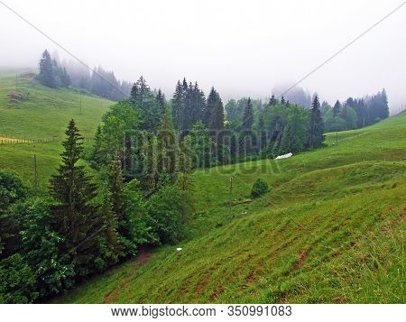 Alpine Pastures And Mixed Forests On The Slopes Of Hochhamm Mountain And In The Urnäsch (urnaesch Or