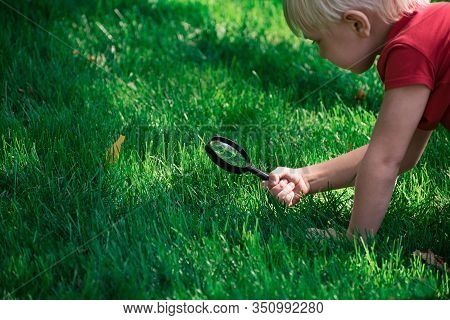 Little Boy Exploring With Magnifying Glass Looks At Grass. Investigation Discovery Concept.