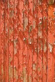 The texture and pattern of peeling red paint on a door poster