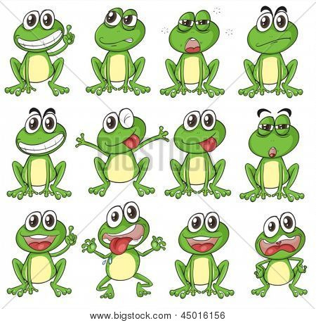 Illustration of the different faces of a frog on a white background