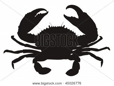 Single crab silhouette.