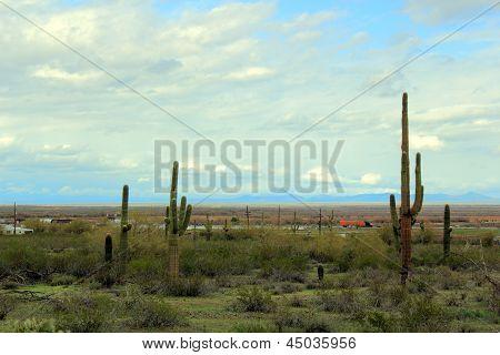 Estrada do deserto de Arizona
