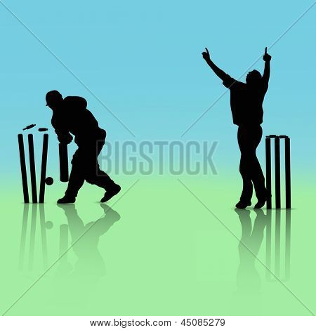 Illustration of a cricket batsman and bowler in playing action on blue and green background.