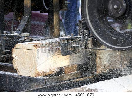 Sawmill Cutting Boards