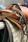 Saddle Up / Horse Equipment / close-up / brown leather poster
