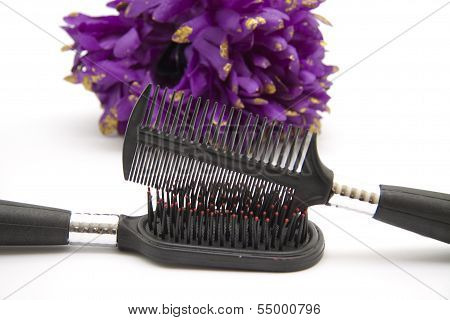 Black Plastic Hairbrush on white background