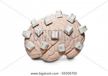Brain with computer keys