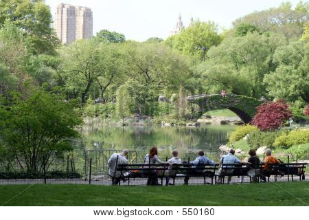 spring in central park poster