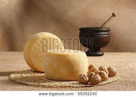 Caciotta And Walnuts