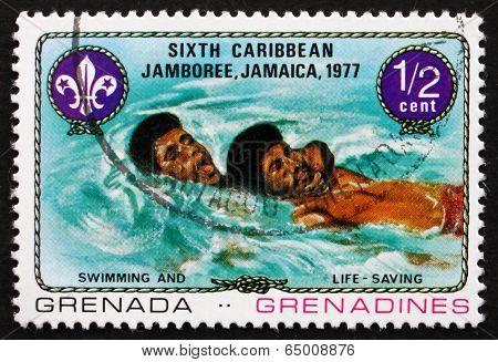 Postage Stamp Grenada 1977 Swimming And Life Saving