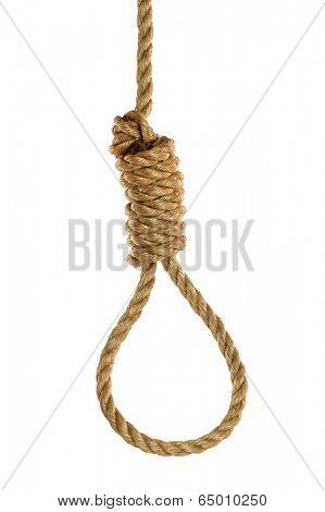 Rope noose isolated over white background. Hangman's noose.