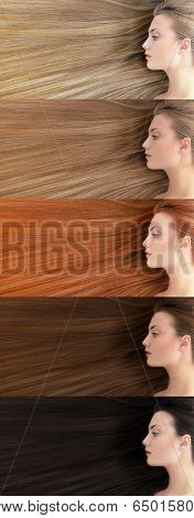 Set of different hair color. Beautiful young woman with  long healthy hair colored in blonde, fair, red, brown and black.