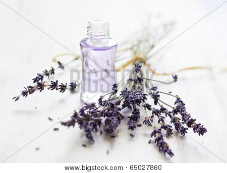 Lavender oil and bunch of dried lavender flower