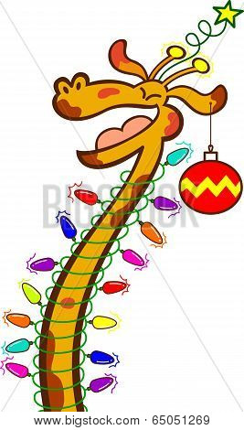Cool giraffe with Christmas lights around its long neck, a star on top of its head and a bauble hanging from its ear while laughing, clenching its eyes, having fun and celebrating Christmas poster