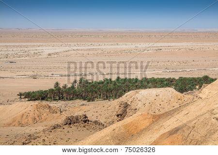 Mountain Oasis Tamerza In Tunisia Near The Border With Algeria.