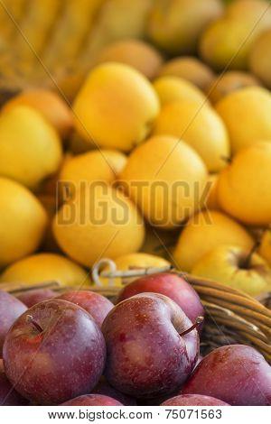fresh red apples closeup