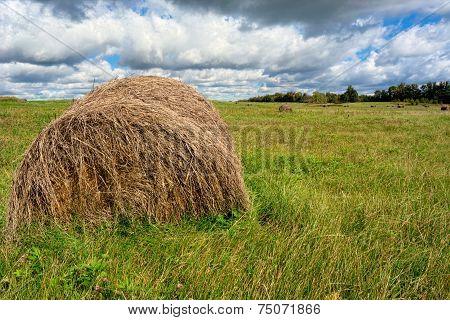 Large Hay Bale