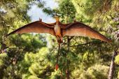 Pterodactyl - prehistoric era wing dinosaur flying at forest poster